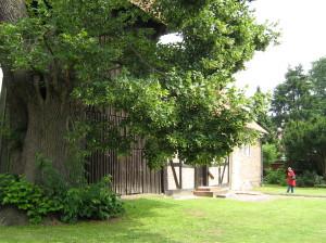 Schulung kirchlicher Baumbeauftragter  -  Theorie @ Fa. FoGaLA   Lüchow   Niedersachsen   Deutschland